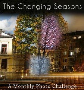 thechangingseasons_6367