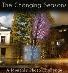 The Changing Seasons is a Monthly Photo Challenge started by CardinalGuzman.wordpress.com.